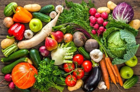 О проведении месячника качества и безопасности ранних овощей и фруктов и работе «горячей линии»