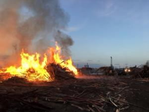 Общероссийский народный фронт и МЧС обратились в прокуратуру с требованием изъять земельные участки у недобросовестных предпринимателей