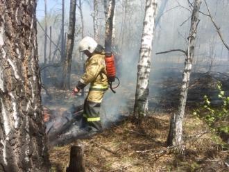 Внимание! Чрезвычайная пожароопасность установилась на всей территории Прибайкалья!