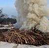 О сжигании отходов сообщили в природоохранные органы