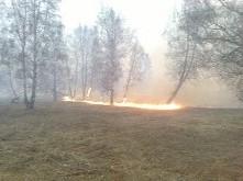 «Сообщает служба 01» Остановим лесные пожары!