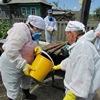 В подтопленных муниципалитетах началась дезинфекция