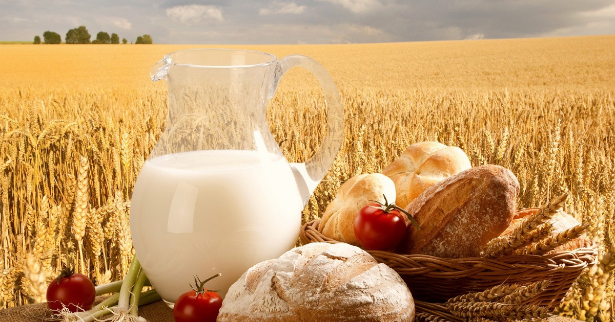 Уважаемые жители Качугского района, осенняя ярмарка-выставка сельскохозяйственной продукции «Щедрый стол для земляков!» состоится 21 ноября 2019 года
