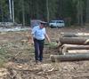 На повестке – борьба с нелегальным оборотом леса