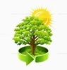 Лесное предприятие оштрафовано за неуплату «экологического налога»