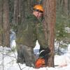 Баерскому лесхозу – 60 лет: стабильность, успех, будущее…