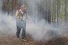 Площадь лесного пожара вблизи Октябрьского превысила 70 гектаров