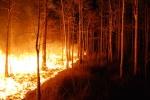 На юге Иркутской области с 10 апреля вводится особый противопожарный режим