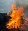 Лесопромышленников накажут за сжигание отходов