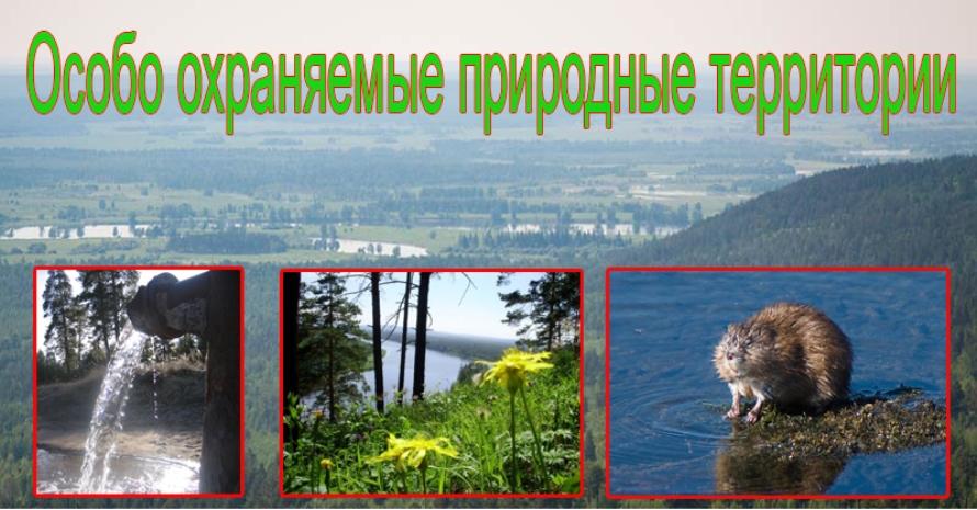 В районе могут появиться особо охраняемые природные территории