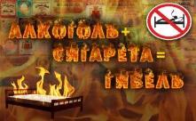 Оперативная информация по пожарам за последние сутки в Иркутской области