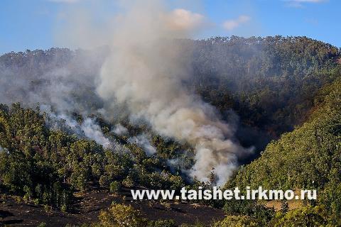 Обстановка с лесными пожарами в Тайшетском районе стабильная