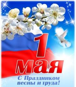 Поздравление мэра Тайшетского района с 1 мая
