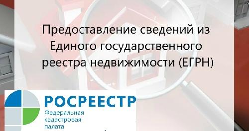 Кадастровая палата ответит на вопросы, связанные с получением сведений из ЕГРН
