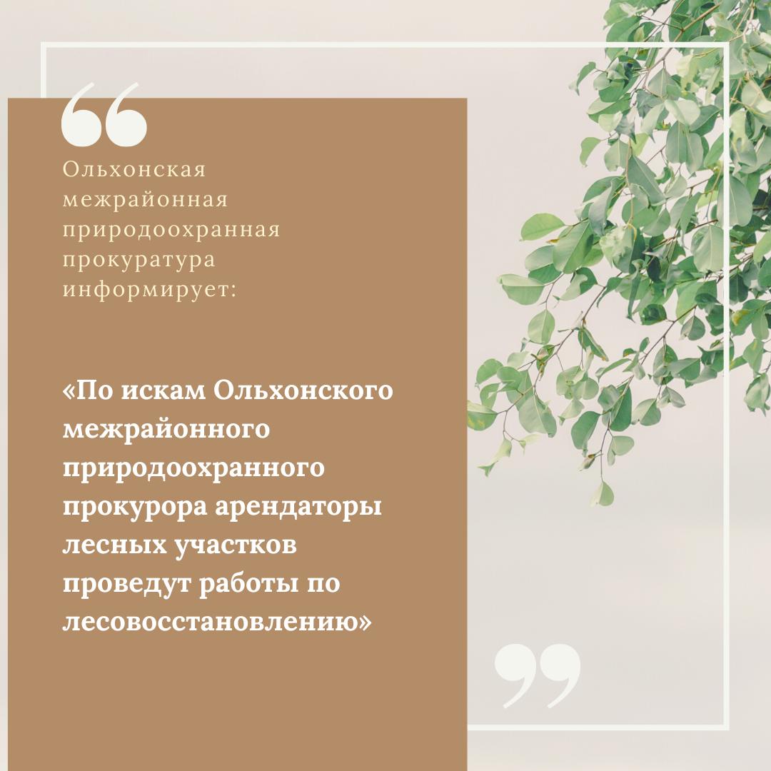 Ольхонская межрайонная природоохранная прокуратура информирует:  «По искам Ольхонского межрайонного природоохранного прокурора арендаторы лесных участков проведут работы по лесовосстановлению»