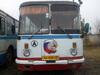 Автобусы возобновляют рейсы