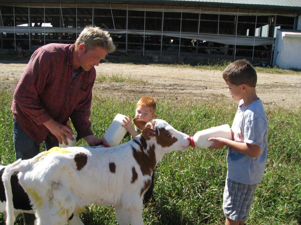 Пять «Начинающих фермеров» Качугского района получат гранты на развитие фермерского хозяйства!