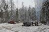 На лесной деляне в пожаре погибли два человека