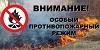 На 31 мая в районе действует один лесной пожар