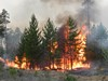 Прогнозируется чрезвычайный класс пожарной опасности