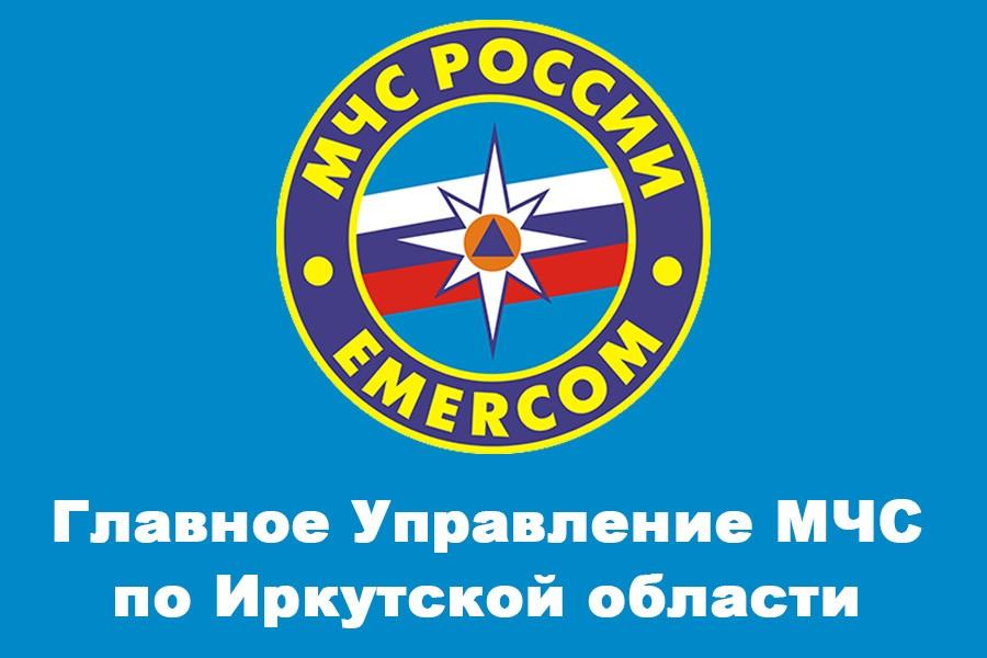 В городах Иркутской области регистрируются первые случаи поджогов тополиного пуха