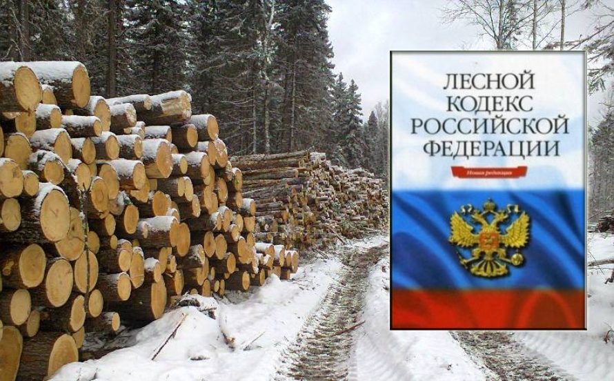 Администрация направила обращение в минлеском Иркутской области: чунские лесники остались без сырья