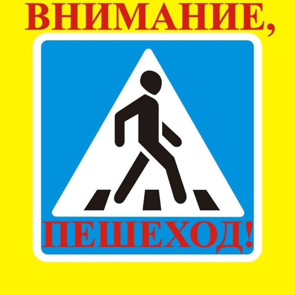 """Операция """"Внимание Пешеход"""""""
