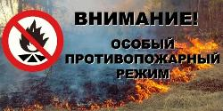 В южных и центральных районах Иркутской области с 10 апреля вводится особый противопожарный режим!