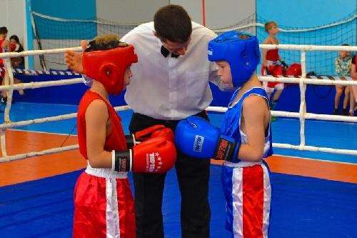 Юбилейный турнир по боксу, памяти Михаила Кузьмича Янгеля