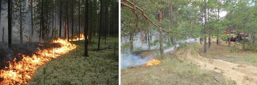Прогнозируется ухудшение погоды, высокий и чрезвычайный классы пожарной опасности