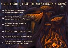 Пожарно-спасательная служба Иркутской области сообщает. Сезон ягод и грибов. Как не заблудиться в лесу.