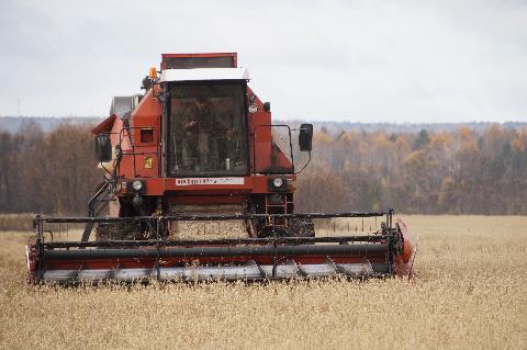 Уборка зерновых идет к завершению