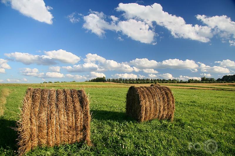 Уважаемые владельцы личных подсобных и крестьянских фермерских хозяйств  Качугского района!