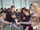 День выборов  (Седаново)