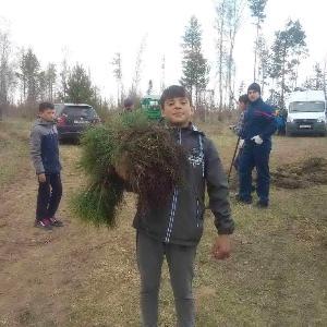 Посадите дерево, пусть оно растет…