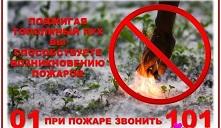 Пожарный надзор предупреждает:  тополиный пух может стать причиной пожаров