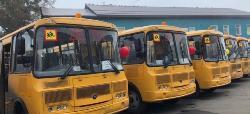Автобусы в подарок