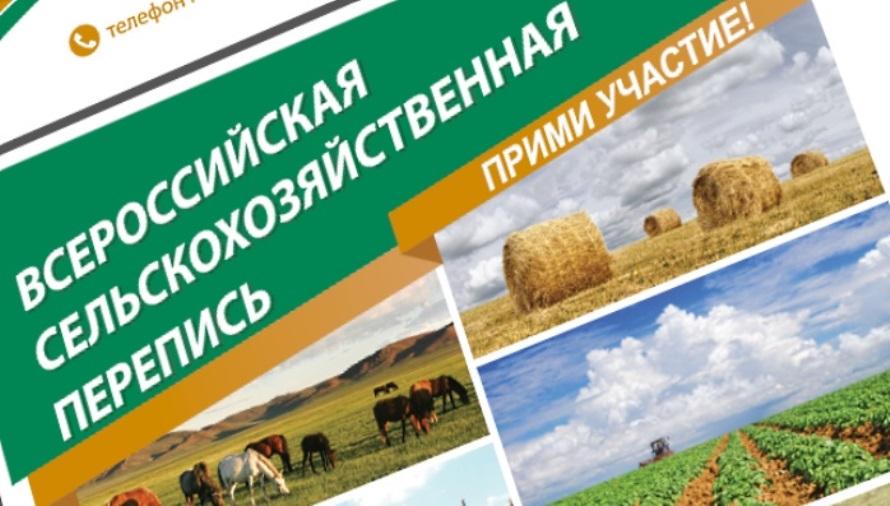 В районе началась подготовка к сельскохозяйственной микропереписи
