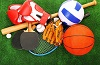 Районная спортивная школа в четвертый раз получит субсидию на развитие