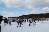 Дан старт в женском забеге лыжных гонок