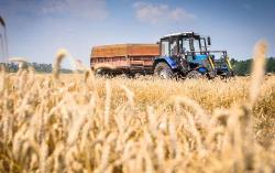 Анатолий Банщиков: план посевной кампании и перспективы развития животноводческой отрасли