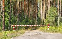 Доступ в леса Иркутской области ограничили до 21 августа