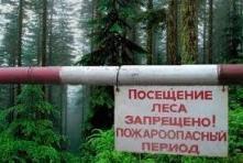 Особый противопожарный режим продлен до 15 июля
