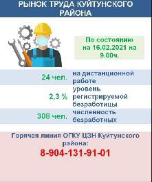 Рынок труда Куйтунского района на 16 февраля 2021 года