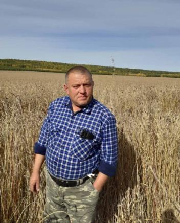 В Качугском районе начали уборку зерновых культур