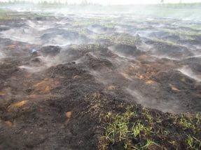 Тушить торфяной пожар вблизи села Большая Тарель будут при помощи тяжелой техники