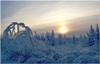 Январь – горячая пора