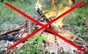 Ограничен доступ в леса
