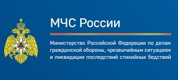 МЧС России запустило обновленную версию официального интернет-портала
