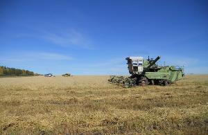 Продолжается уборка зерновых